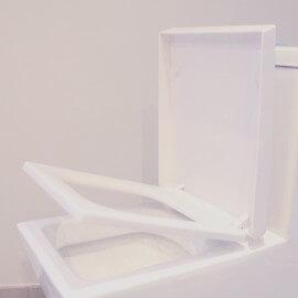 wc à poser monobloc connect