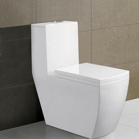 WC à Poser Monobloc - Céramique Blanc - 35x68 cm - Millenium